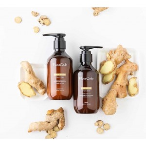 FicceCode Ginger Shampoo/Conditioner 300ml