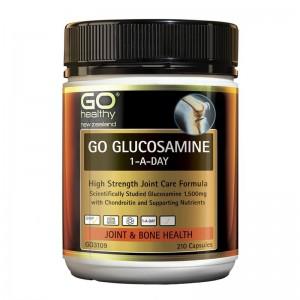 Go healthy Go Glucosamine 1-A-Day 210 Caps