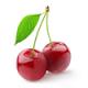 Veges/ Fruits