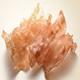 Dried Seefood
